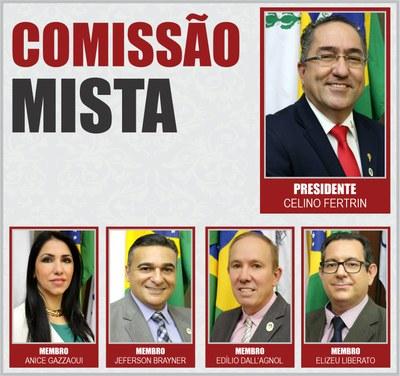 COMISSÕES PERMANENTES 2020 - Mista