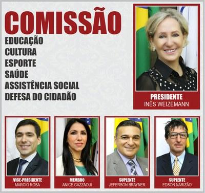 COMISSÕES PERMANENTES 2020 - ECESASDC