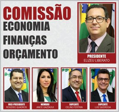 COMISSÕES PERMANENTES 2020 - EFO