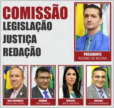 COMISSÕES PERMANENTES 2020 - LJR
