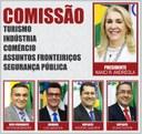 COMISSÕES PERMANENTES 2020 - TICAFSP