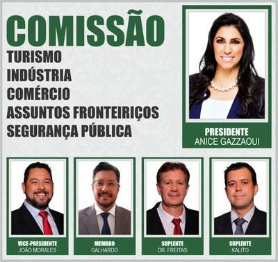 Comissão TICAFSP 2020