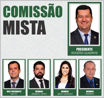 Comissão Mista 2021