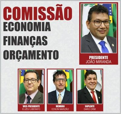 Comissão CEFO