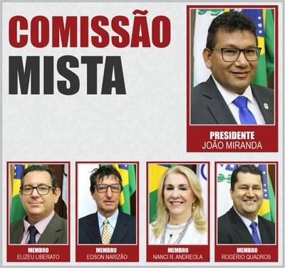 Comissão Mista
