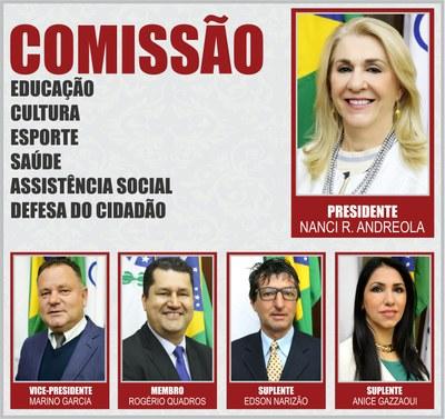 Comissão  CECESASDC - 2019