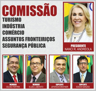 Comissão CTICAFSP - 2019