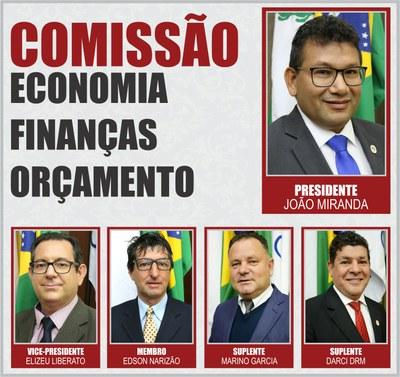 Comissão CEFO - 2019