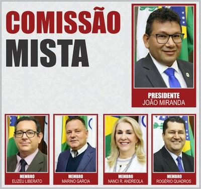 Comissão Mista - 2019