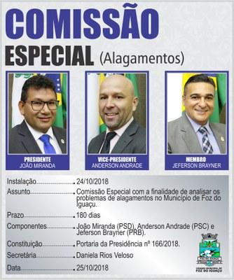 COMISSÕES TEMPORÁRIAS 2019 - ALAGAMENTOS