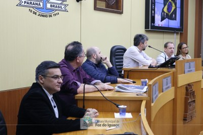 Audiência Quadrimestral da Saúde - 31-05 (04)