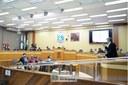 Sessão Ordinária e Extraordinária - 11-07 (07)