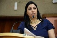 Audiência Pública, proposta pela vereadora Anice Gazzaoui, quer cobrar soluções para alagamentos
