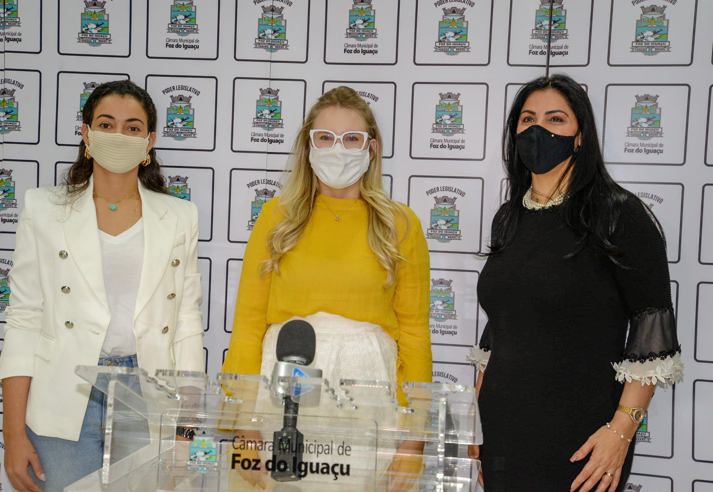 Bancada Feminina traz à tona temática da violência contra mulher em proposição que questiona ressocialização do agressor
