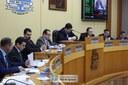 Câmara aprova em 1ª discussão alteração em PLC referente ao corte de árvores e vegetais em espaços públicos