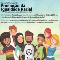 Conselho Municipal de promoção da igualdade racial já é lei!